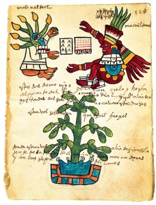 Aztec depiction of chocolate