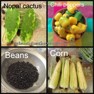 Native mexican ingredients
