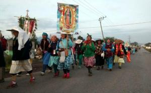 pilgrims for Our Lady of Guadalupe