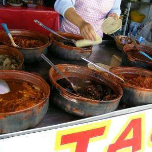 Stews for taco fillings | My Heart Of Mexico