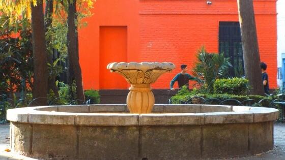 How to Tour Mexico City's Most SophisticatedNeighborhood