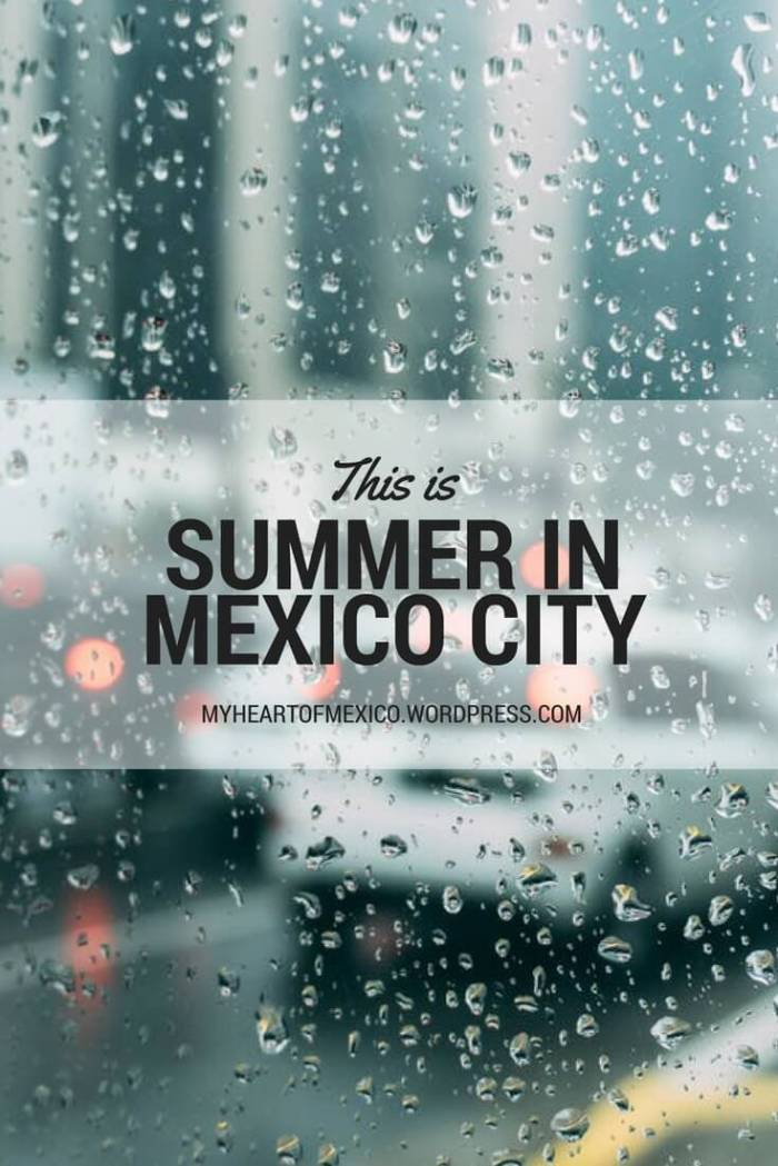 This is What a Blissful Summer Looks Like in Mexico City | My Heart of Mexico