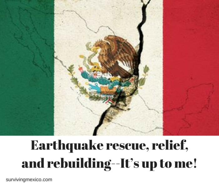 Earthquake rescue, relief and rebuilding–It's up to me!