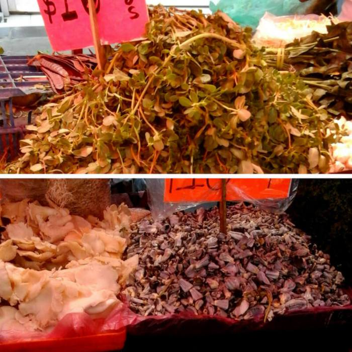 Mexican Market Foods Purslane Corn Smut